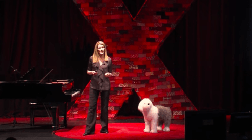 TED Talk: How Dogs Tell Us What We Need to Know